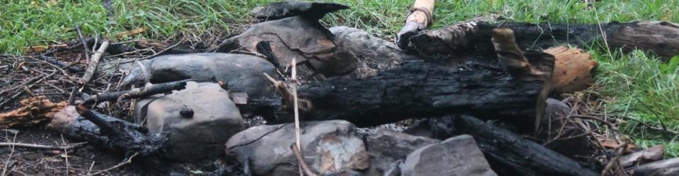 Burnt wood_0044