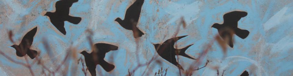 birds on wall